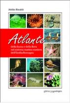 Atlante della fauna e della flora nel sistema marino costiero dell'Emilia Romagna