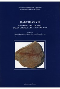 Bakchias VII. Rapporto preliminare della campagna di scavo del 1999