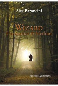 Wizard. L'avventura di Merlino
